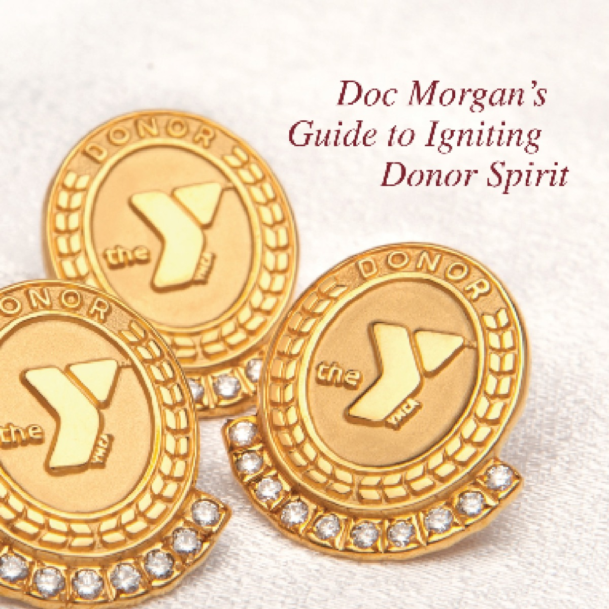 Guide to Igniting YMCA Donor Spirit